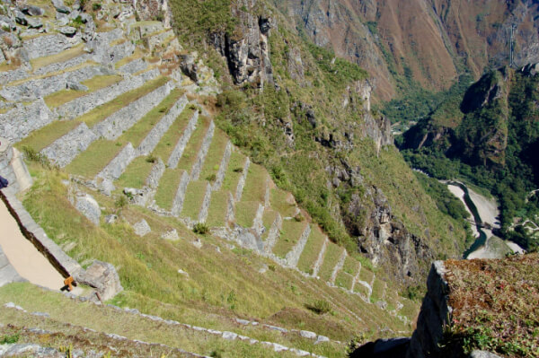 Machu Picchu - terasser
