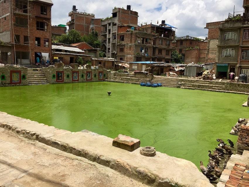 Bangamati, innsjø fylt av alger