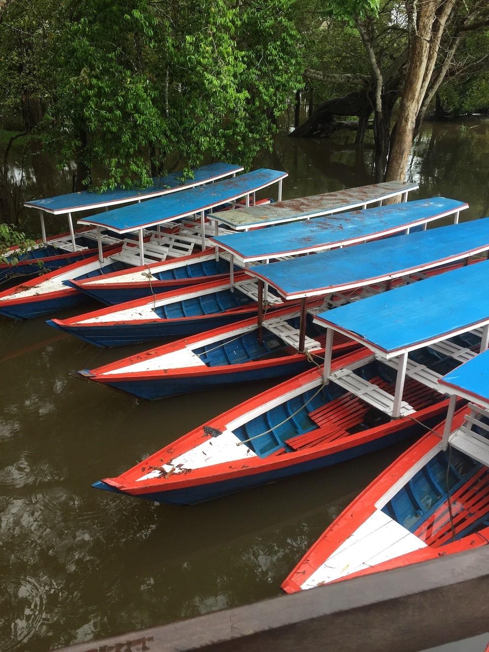 amazona river
