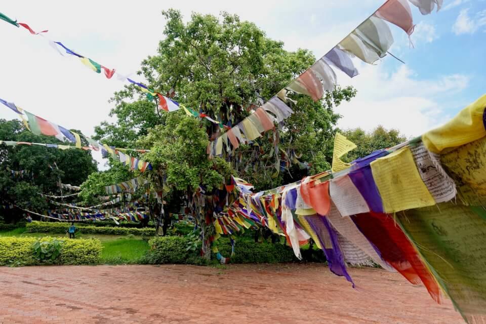 Bønnflagg utenfor Maya Devi tempelet, Lumbini
